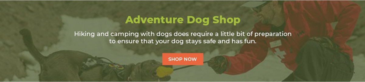Adventure Dog Shopping Guide