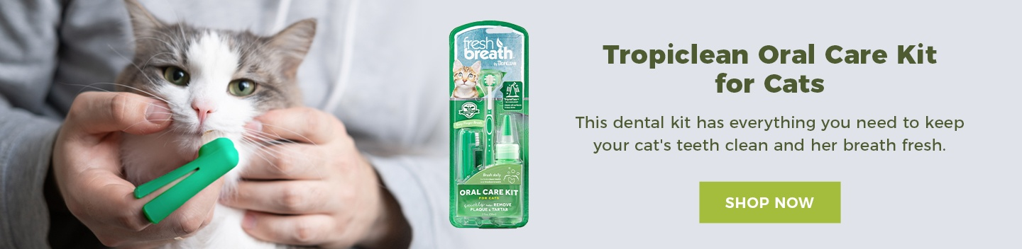 Tropiclean Oral Kit for Cats