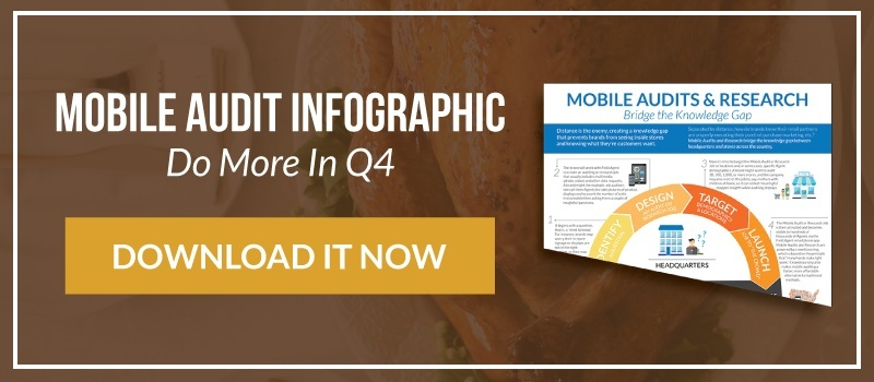 Mobile Audits & Research Infographic