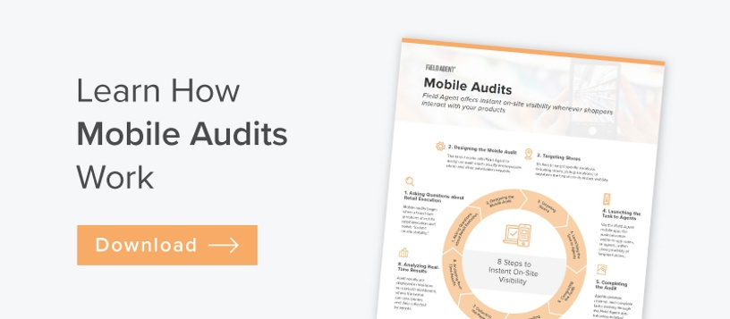 Download the Mobile Audits Explainer