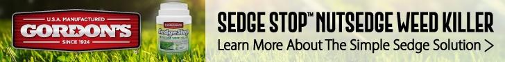 June 21 Sedge Stop-Gordon's