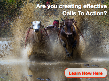 Website Optimization and Effective Calls to Action: Learn How Now