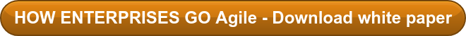 HOW ENTERPRISES GO Agile - Download white paper