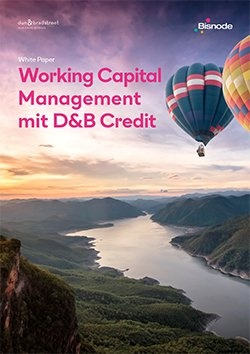 Whitepaper: Working Capital Management mit D&B Credit