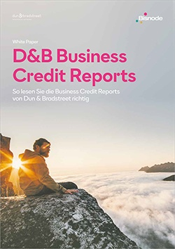 Whitepaper: So lesen Sie D&B Business Credit Reports