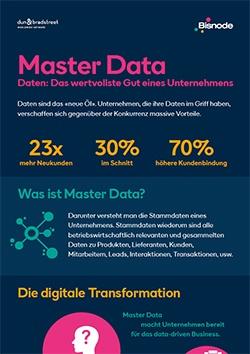 Infografik Master Data: Stammdaten erklärt