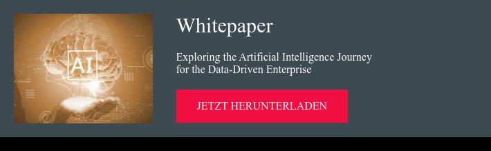 Whitepaper Exploring the Artificial Intelligence Journey  for the Data-Driven Enterprise jetzt herunterladen