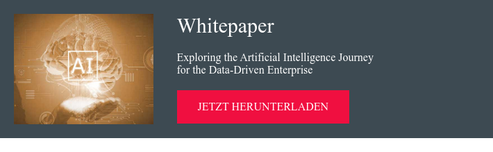 Whitepaper Exploring the Artificial Intelligence Journey  for the Data-Driven Enterprise jetzt herunterladen