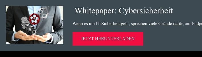 Whitepaper:Cybersicherheit Wenn es um IT-Sicherheit geht, sprechen viele  Gründe dafür, am Endpunkt anzusetzen. Welche das sind, lesen Sie hier. jetzt herunterladen