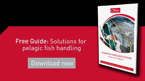 Free guide: Systemer for håndtering av pelagisk fisk