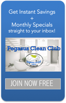 pegasus clean club - san antonio carpet cleaning specials