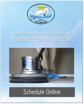 pegasus carpet care schedule online service