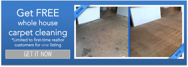 san antonio carpet cleaning special
