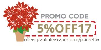 Grab your Poinsettia Discount!