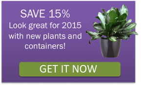 office plants save 15% coupon
