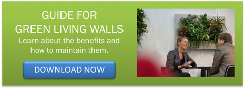 the benefits of green living walls_vertical garden systems