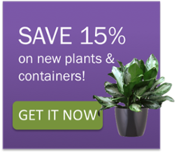 coupons for office plants and containers