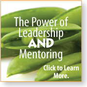 leadership and mentoring