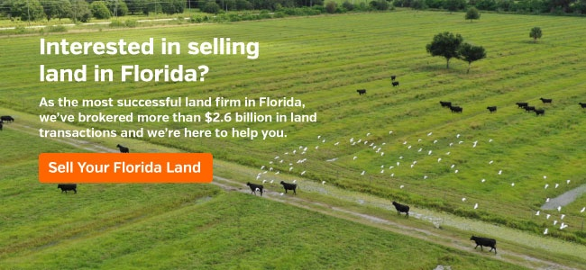 Sell Your Florida Land
