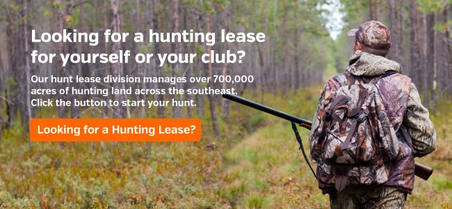 Looking for a Hunting Lease?