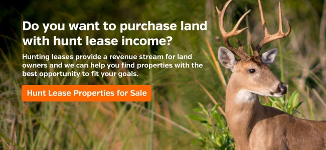 Hunt Lease Properties for Sale