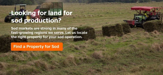 Looking for Property for Sod Farming?