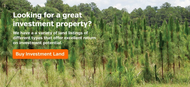 Buy Investment Land
