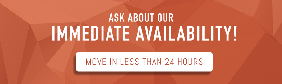 Ask about our immediate availability