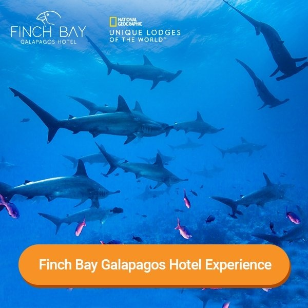 Finch Bay Galapagos Hotel Experience