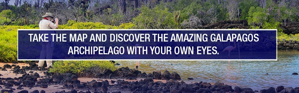 Contact us and discover the Galapagos