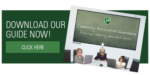 Community Association Insurance flyer pack