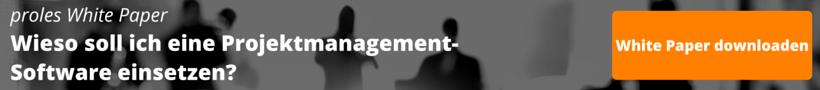 Wieso soll ich eine Projektmanagement-Software einsetzen?
