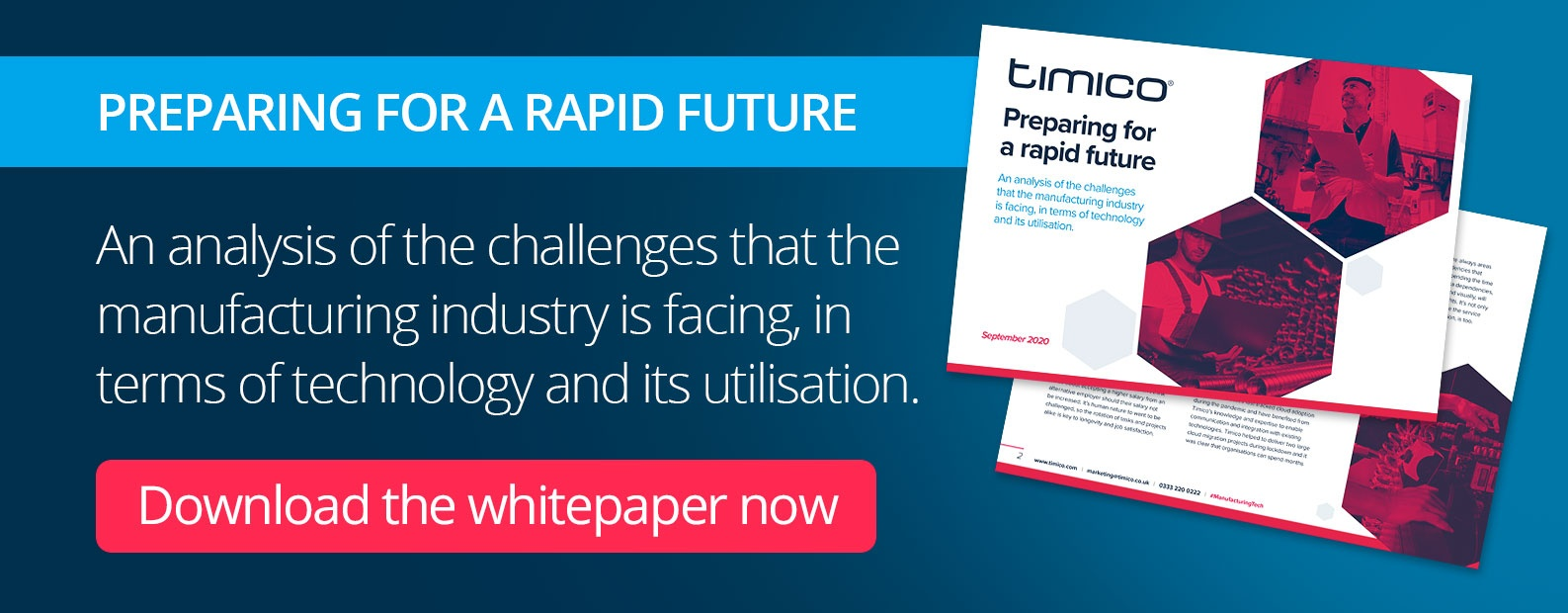 Download our Manufacturing whitepaper now