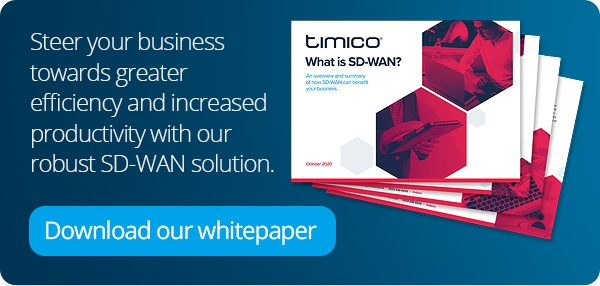 Download our SD-WAN whitepaper