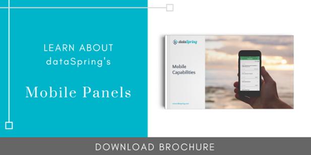 dataSpring Mobile Capabilities Brochure