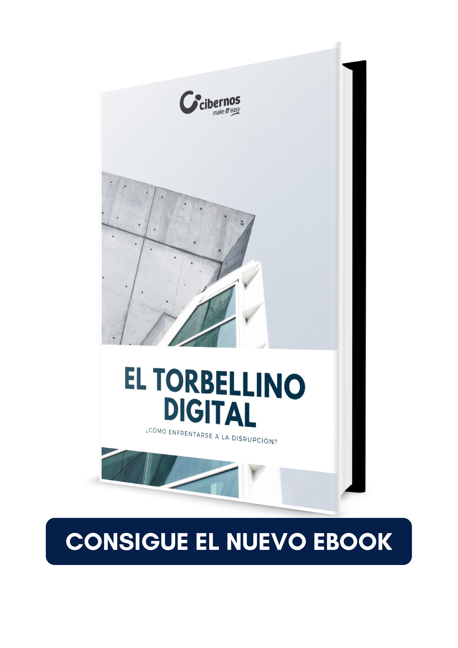 torbellino de transformación digital ebook