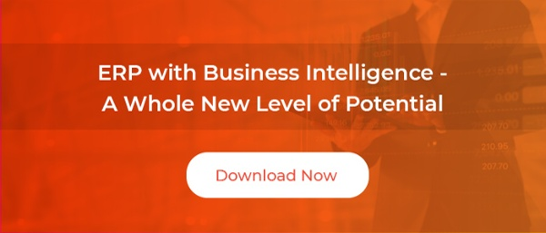 ERP with Business Intelligence - A Whole New Level of Potential