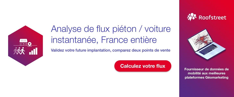 Analyse de flux piéton / voiture instantané France entière