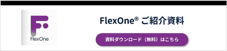 FlexOne ご紹介資料
