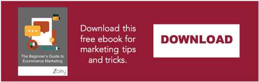 Download The Beginner's Guide to Ecommerce Marketing