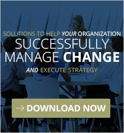 Change Management and Strategy Execution Ebook