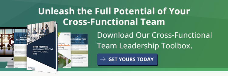 Cross-Functional Team Building