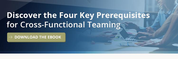 Cross-Functional Teaming