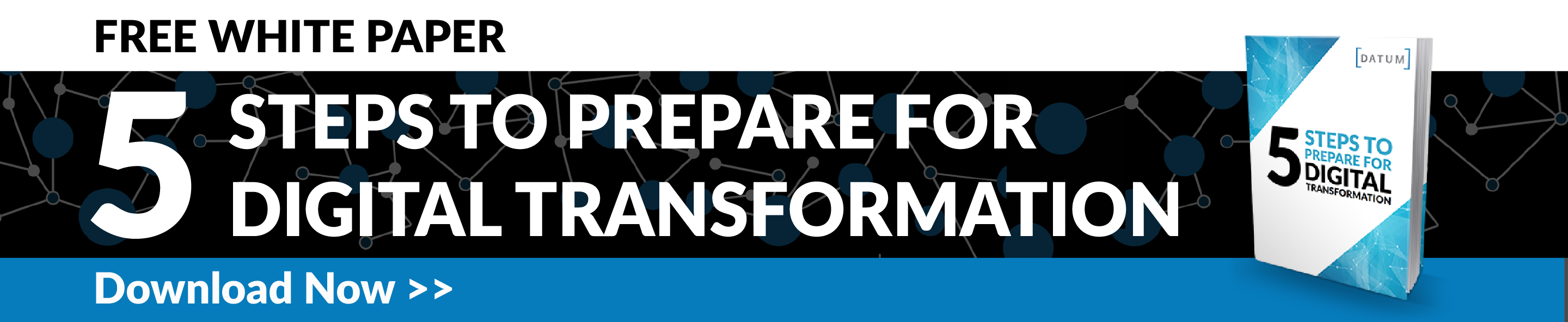 Download Digital Transformation White Paper