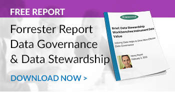 Download the Data Governance & Data Stewardship Forrester Report