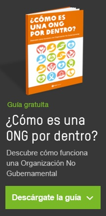 ebook-conoce-ong