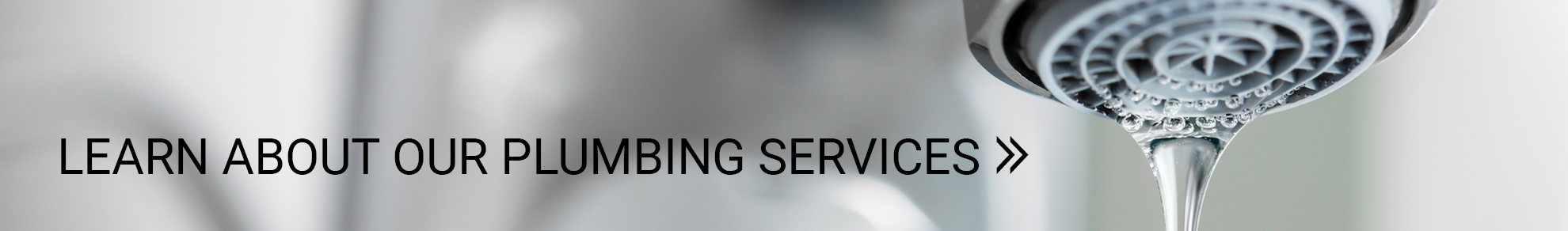 Learn About Our Plumbing Services