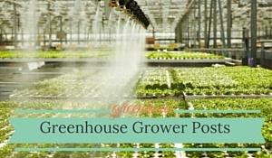 Professional Greenhouse Grower Posts