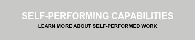 Self-Performing Capabilities Learn More about Self-Performed Work
