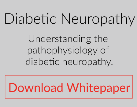 Preclinical efficacy model for evaluating effective treatments for diabetic neuropathy